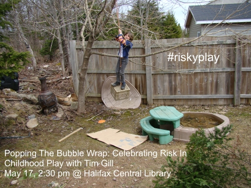 Backyard adventure riskyplay
